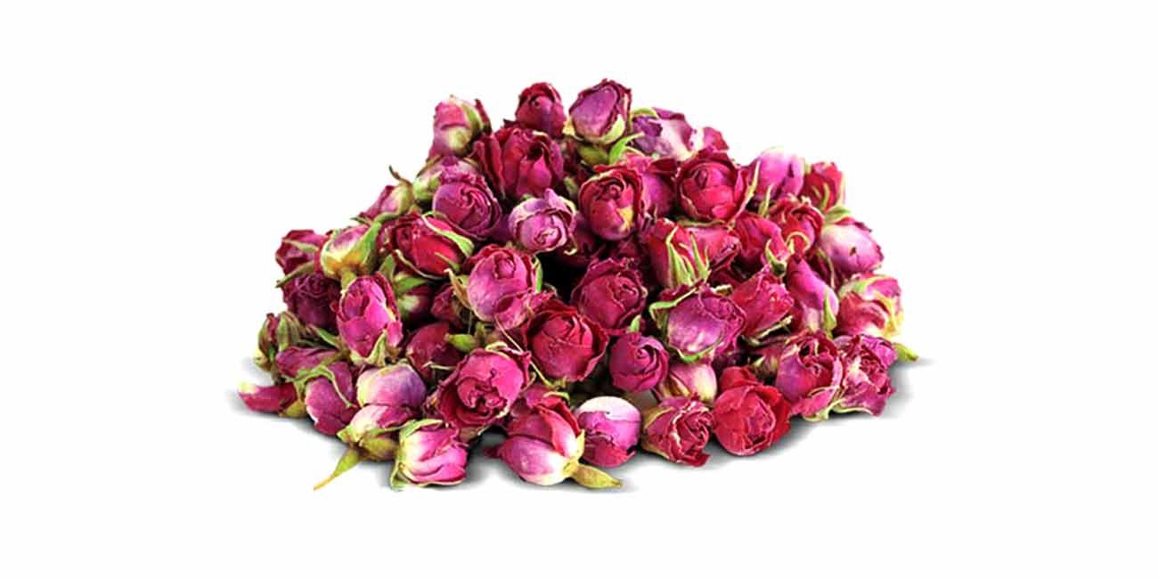 گل سرخ محمدی عنچه
