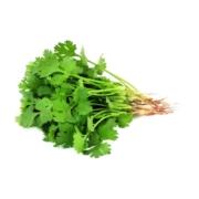 سبزی گشنیز